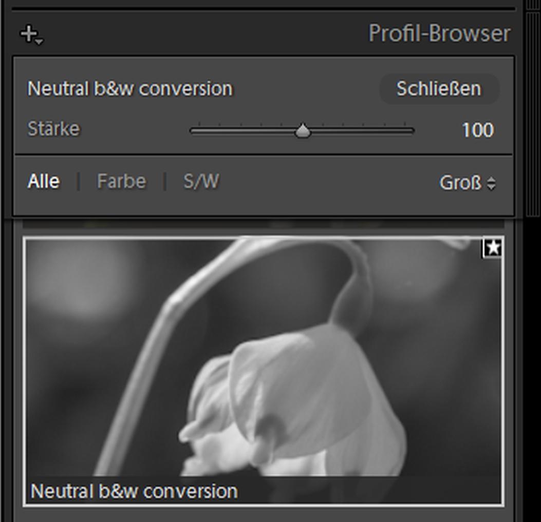 Neutrale SW-Umwandlung mit Profil